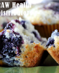Raw health blueberry muffin