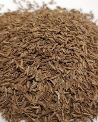 Caraway seed (Whole)